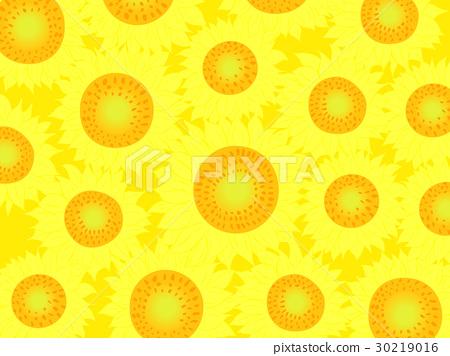 Sunflower illustration background material 30219016