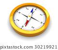 compass 30219921