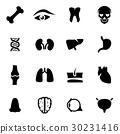 icon, anatomy, icons 30231416