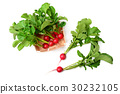 Radish in basket isolated on a white background 30232105