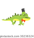 chameleon, vector, hat 30236324