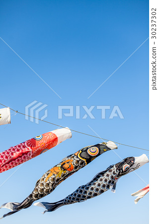 Blue sky and carp streamer 30237302