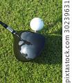 Golf 30239631