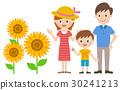 가족 해바라기 30241213