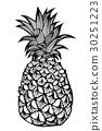 Tropical fruit pineapple. 30251223