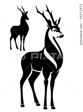 deer black and white vector outline and silhouette 30251475