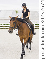 Woman Riding a Horse in Jumper Ring 30252674