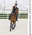 Woman Riding a Horse in Jumper Ring 30252675