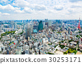 View from above on Tokyo Tower with skyline in 30253171