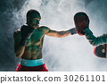 boxer, american, male 30261101