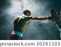 boxer, american, male 30261103