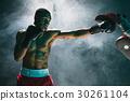 boxer, american, male 30261104