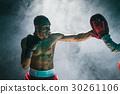 boxer, american, male 30261106