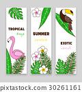 vector, banner, flower 30261161