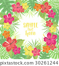 Background with tropical flowers 30261244