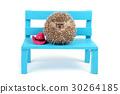 Hedgehog ball on a chair. 30264185