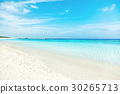바다, 오키나와, 쾌청 30265713