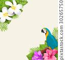 Exotic Border with Parrot Ara, Flowers Plumeria 30265750