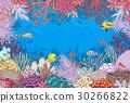 矢量 矢量图 珊瑚 30266822