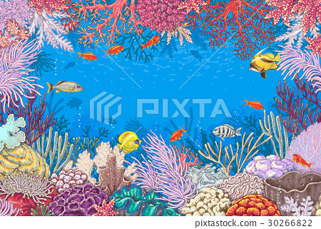 Underwater Background with Corals  and Fishes 30266822