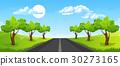 Rural summer landscape 30273165