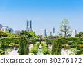 สวน,สวนสาธารณะ,แปลงดอกไม้ 30276172