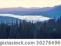 forest,fog,mountain 30276496