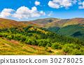 mountain, meadow, grassy 30278025