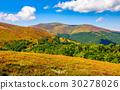 mountain, meadow, grassy 30278026
