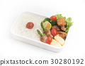 japanese traditional bento 30280192