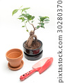 gardening 30280370