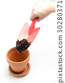 gardening 30280371