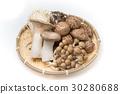 mushrooms 30280688