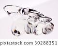 Pure Diamonds! 30288351