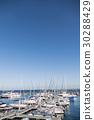 碼頭 小船塢 遊艇港 30288429