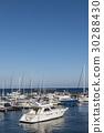 碼頭 小船塢 遊艇港 30288430
