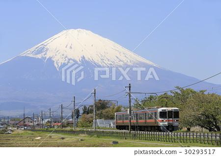 新鲜的绿色御殿场线和降雪的富士 30293517