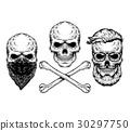 Vector illustration of a skull and crossbones 30297750