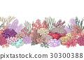 vector coral reef 30300388