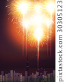 firework, fireworks, summer 30305123
