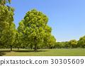 하나하쿠키넨코엔, 하나하쿠 기념공원, 꽃박람회 기념공원 30305609
