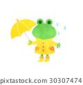 frog, frogs, rain 30307474