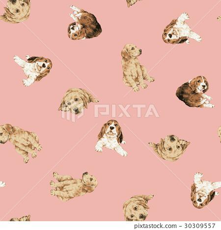 Dog Background 30309557