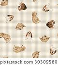 拉不拉多 拉布拉多狗 米格魯 30309560