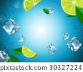 flying lemons and ice cubes 30327224