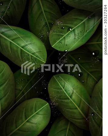 green leaves elements 30327264