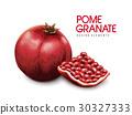 red pomegranate illustration 30327333