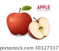 red apples illustration 30327337