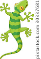 Cartoon gecko 30337681