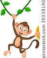 Cartoon monkey hanging 30339140